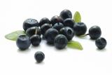Handful of acai berries