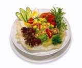The Zone Diet includes high protein meals