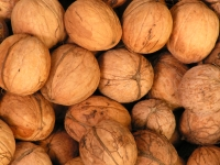 Nuts in moderation can be filling and are packed with healthy omega 3 fatty acids