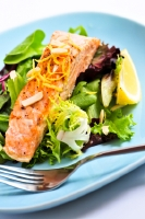 Salmon is a great choice when on the ketogenic diet