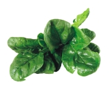 Spinach is low in calories and high in iron