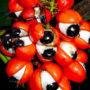 The Guarana Plant