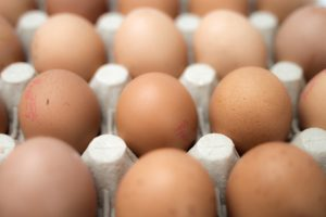 Row of healthy free range eggs