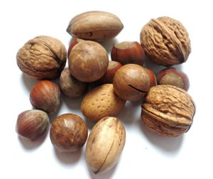 Nuts contain high levels of nutrients and essential fats